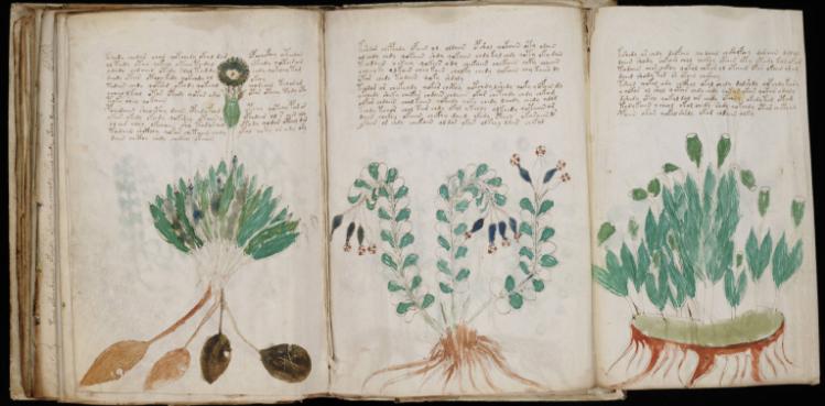Voynich manuscript replica te koop